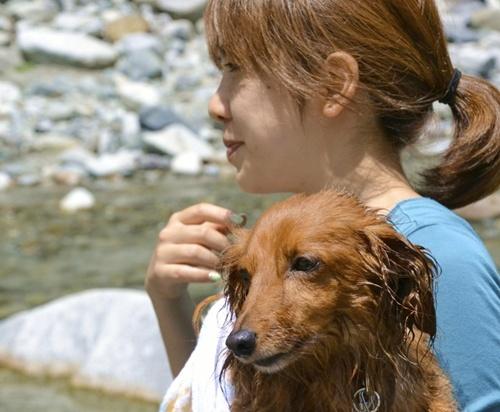 ペットライブス犬キャンプ