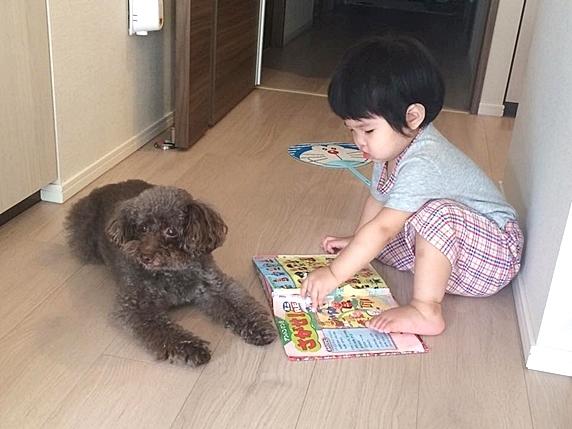 151102_babydog2_429x572