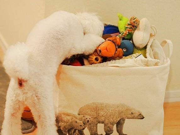 おもちゃ箱ルーチェ_572b