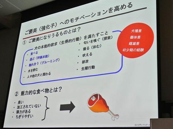 鹿野さんセミナースライド