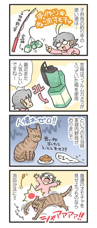 家庭内野良猫との遊び方4コマ漫画