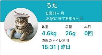 猫のプロフィール、うた