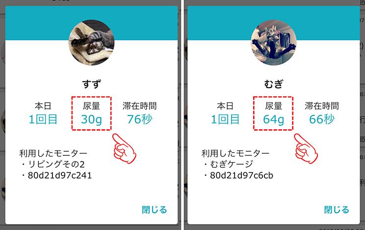 猫2匹の尿量の比較画面