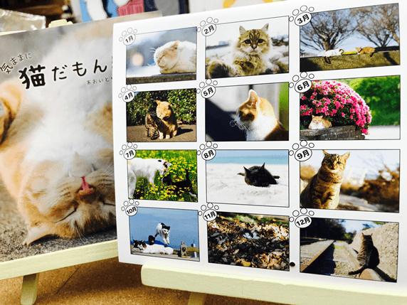 あおいとりの猫カレンダー2019気ままに生きる。カレンダー絵柄一覧表