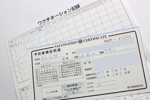 犬の混合ワクチン接種証明書