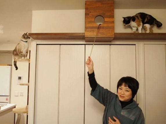 自宅のキャットウォークの説明をする一級建築士金巻とも子氏