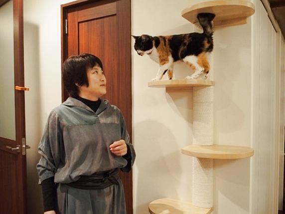 自宅のキャットステップで三毛猫と顔をあわせる一級建築士金巻とも子氏