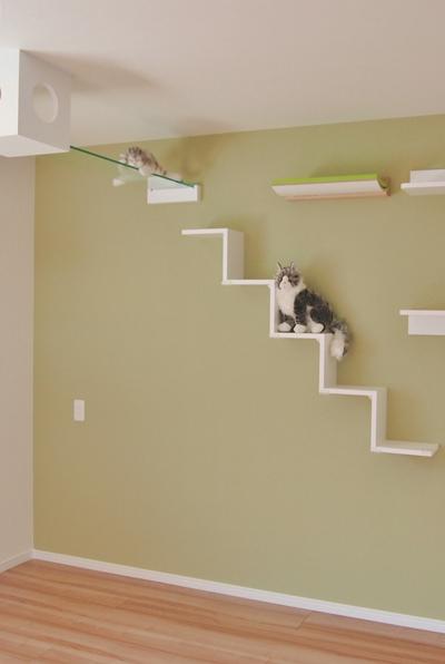猫共生住宅ichinekoリビングのキャットウォーク