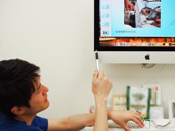 診察室のモニターで腹腔鏡手術について説明する寺村獣医師