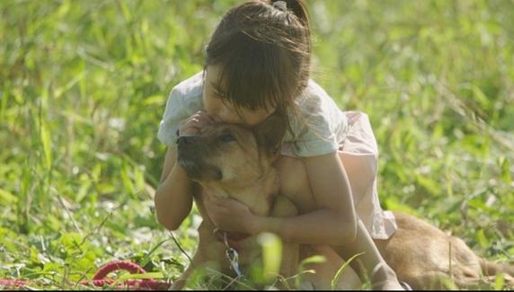 映画「駅までの道をおしえて」草原で伏せる雑種犬を抱きしめる女の子