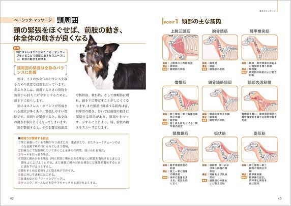 「ドッグマッサージ 実践テクニックBOOK」p42-43