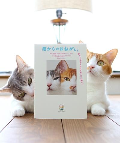 「猫からのお願い」本と2匹の猫