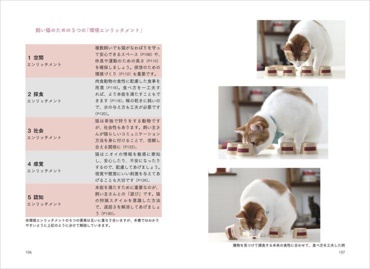 「猫からのおねがい」ページ_環境エンリッチメント