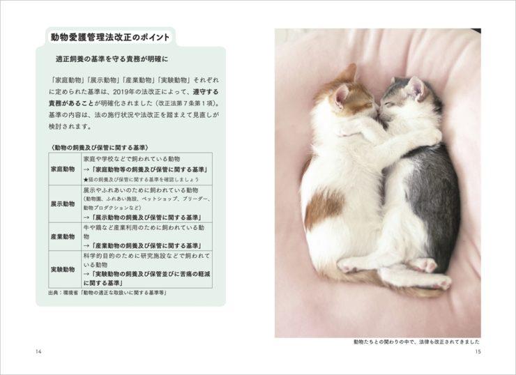 「猫からのおねがい」ページ_動愛法改正のポイント