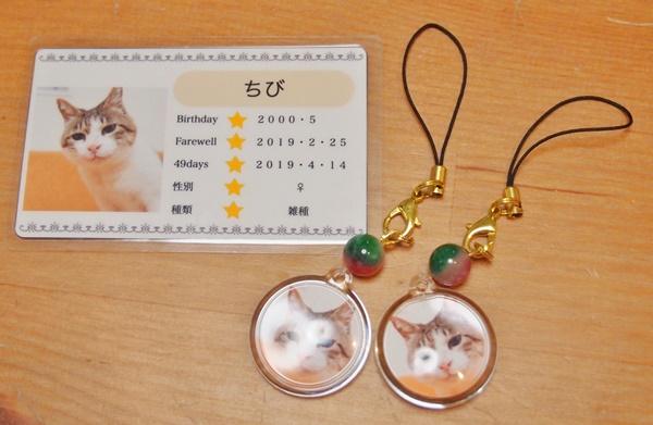 愛猫ちびの顔写真入りキーホルダーとメモリアルカード