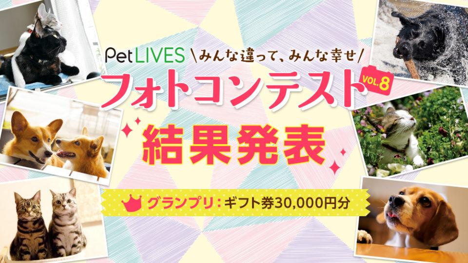 【結果発表】PetLIVES 愛犬・愛猫フォトコンテストvol.8