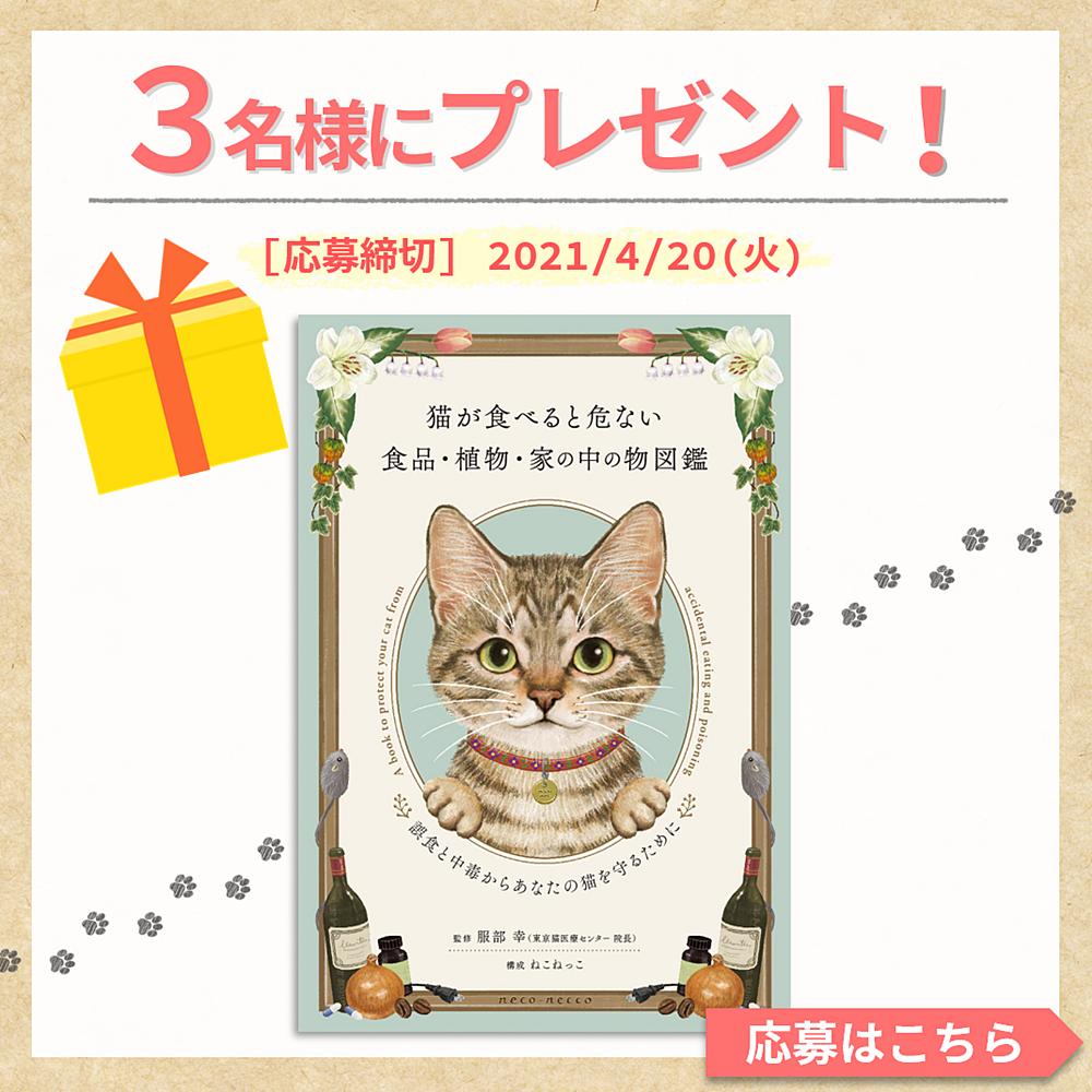 猫が食べると危ない物図鑑プレゼントバナー
